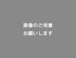 dummy_maint_img310